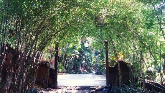 yoga-barn-ubud-bali-guide